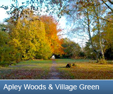 Apley Woods & Village Green button